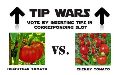 tip-war-insta-tomato