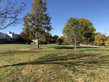 Glastonbury, CT High School