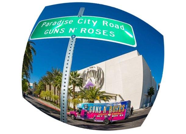 «Paradise City» – райский город оружейников с розами