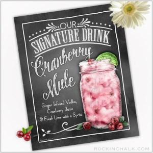 Cranberry Mule Jar_72