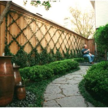 Awesome Fence With Evergreen Plants Landscaping Ideas 33