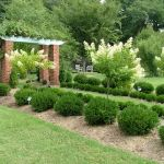 Awesome Fence With Evergreen Plants Landscaping Ideas 81