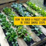 Amazing Creative Wood Pallet Garden Project 32