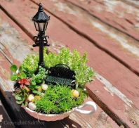 Amazing DIY Mini Fairy Garden for Miniature Landscaping by SaltTree