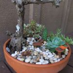 Amazing DIY Mini Fairy Garden for Miniature Landscaping 70
