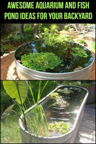 DIY Indoor Aquaponics Fish Tank Ideas 30