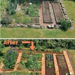 Homestead farm garden layout and design for your home 6