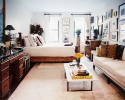 One room apartment layout design ideas 10