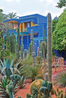 Stunning desert garden ideas for home yard 28