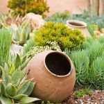 Stunning desert garden ideas for home yard 33