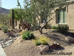 Stunning desert garden ideas for home yard 48