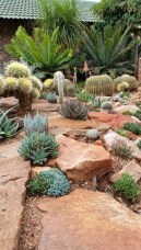 Stunning desert garden ideas for home yard 56