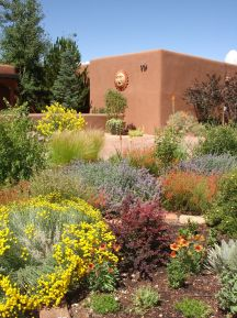 Stunning desert garden ideas for home yard 60