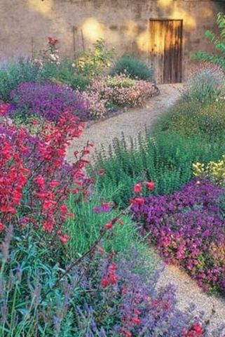 Stunning desert garden ideas for home yard 8