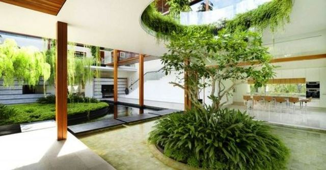 Artistic Tree Inside House Interior Design