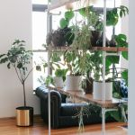 Cool Plant Stand Design Ideas for Indoor Houseplant 18