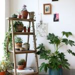 Cool Plant Stand Design Ideas for Indoor Houseplant 31