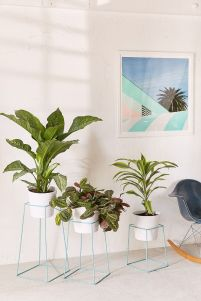 Cool Plant Stand Design Ideas for Indoor Houseplant 33