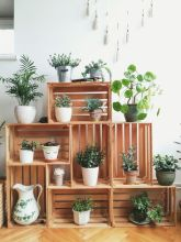 Cool Plant Stand Design Ideas for Indoor Houseplant 35