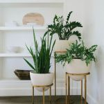 Cool Plant Stand Design Ideas for Indoor Houseplant 40