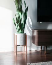 Cool Plant Stand Design Ideas for Indoor Houseplant 42