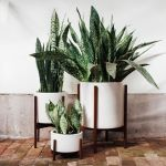 Cool Plant Stand Design Ideas for Indoor Houseplant 8