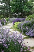 Front Yard and Garden Walkway Landscaping Inspirations 19