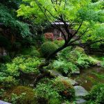 Peacefully Japanese Zen Garden Gallery Inspirations 32