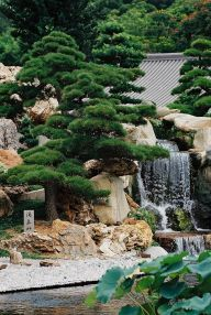 Peacefully Japanese Zen Garden Gallery Inspirations 6