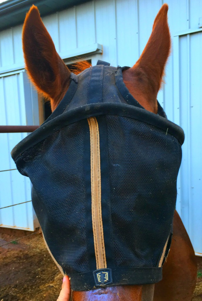 Noble Outfitters Fly Mask Review II