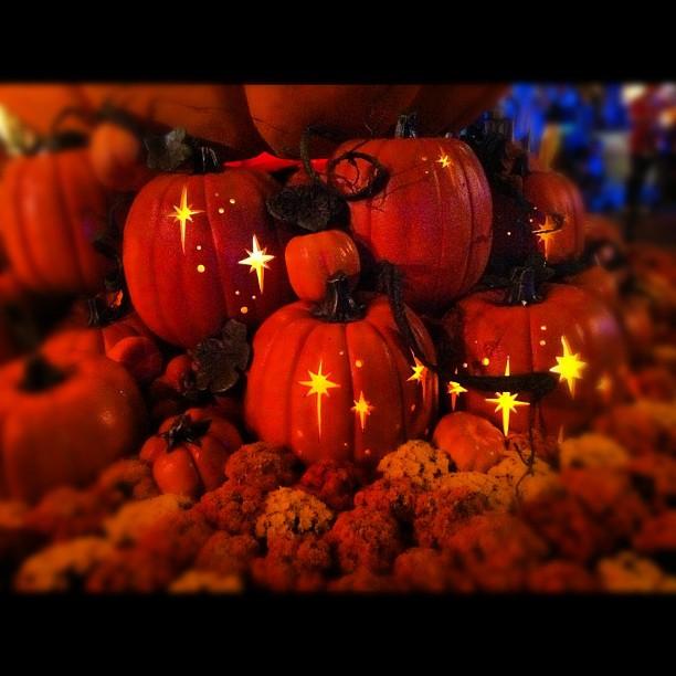 Pumpkins at Disneyland