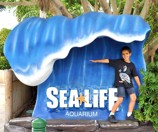 SEA LIFE Aquarium at LEGOLAND