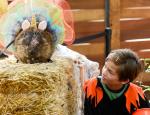 Halloween Zoo-tacular OC Zoo