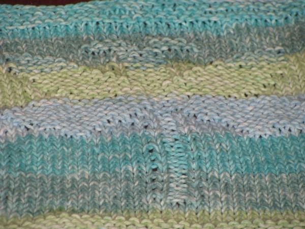 dragonfly dishcloth 2