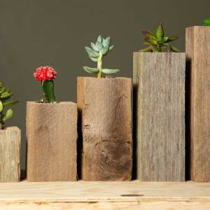 Succulent Planter Box Set Made from Reclaimed Wood - Perfect for Real or Faux Succulent Plants