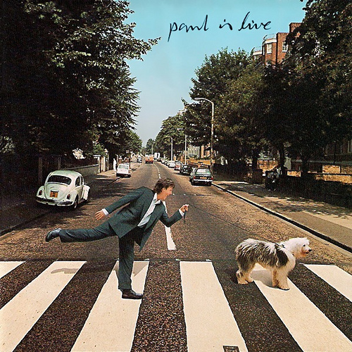 paul-is-live