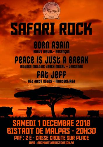 2018 12 01 SAFARI ROCK 1