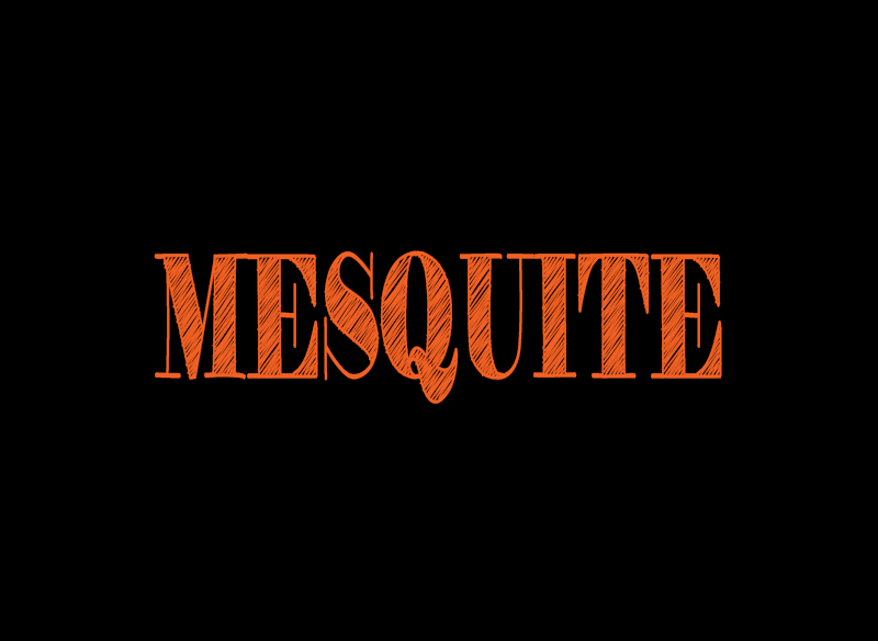 Mesquite, Texas sell my home today