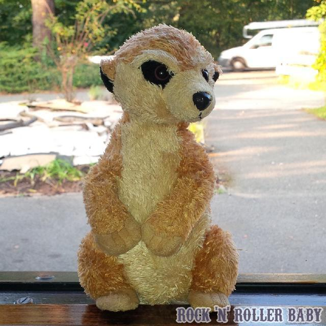This is Baby Meerkat. My friend Sammy Shirley gave him to Flobo when she was tiny and first fell in love with the little creatures. He has slept in her bed every night since and he comes on holiday with us. He went to school with her today and she said she cuddled him when she needed to. Thank heavens the teacher said that was ok, I think ordinarily they're not keen on that sort of thing but I'm so much happier, a stuffed toy he may only be, to know she has at least got Baby Meerkat to cuddle when I'm not there.