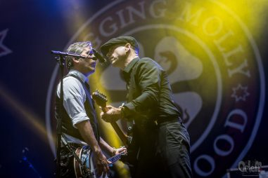 Flogging Molly @ INmusic festival, 2017