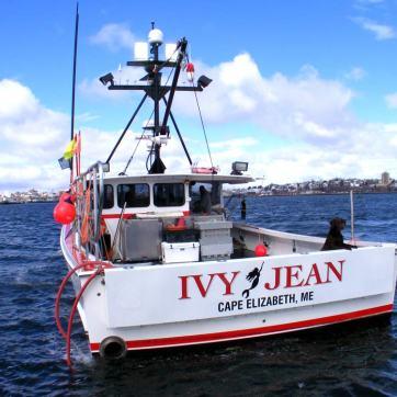 ivy-jean-1000
