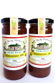 Gooseberry-Jam-Still-1