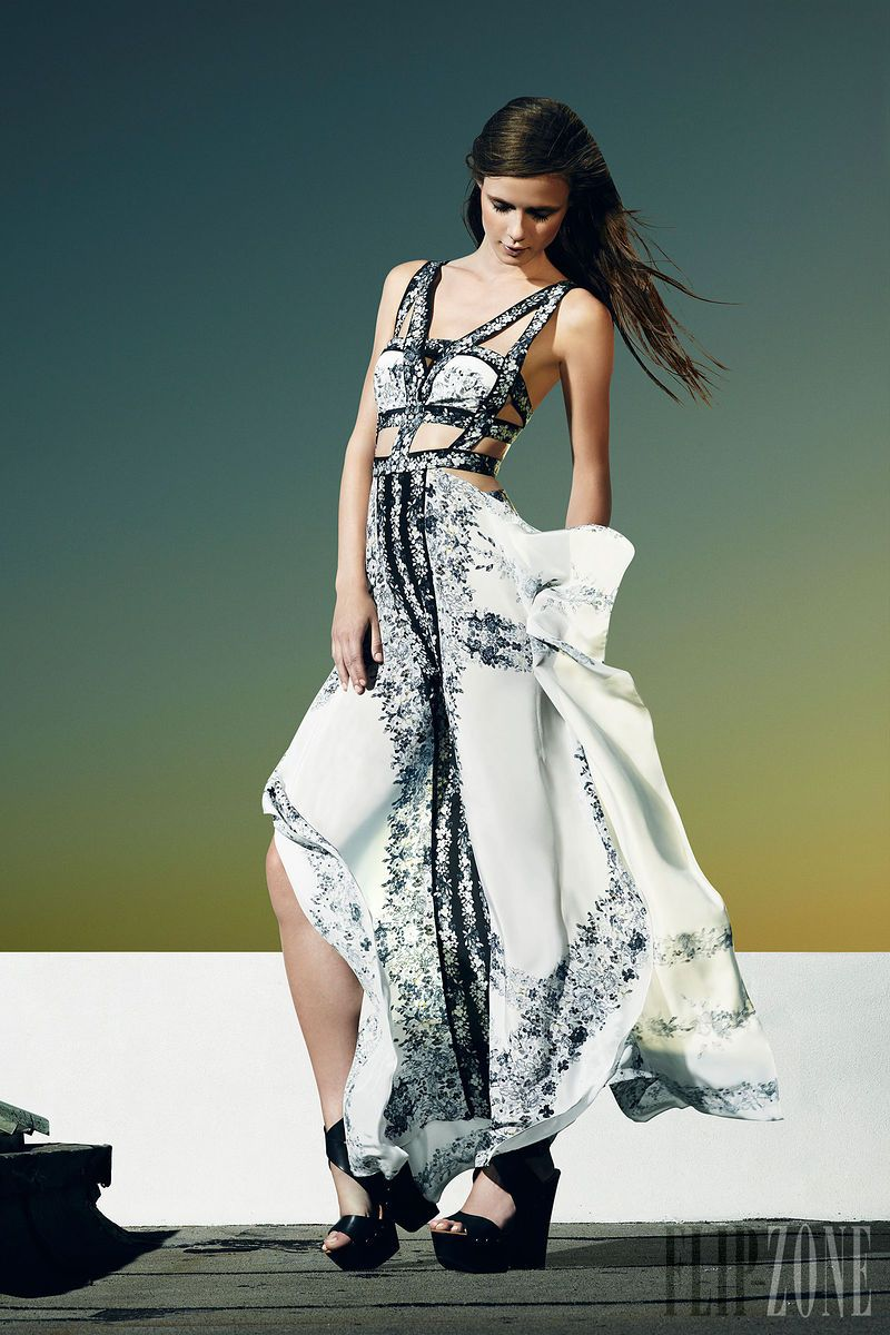 Le Meilleur Bcbg Max Azria Resort 2014 Pret A Porter Dress To Ce Mois Ci