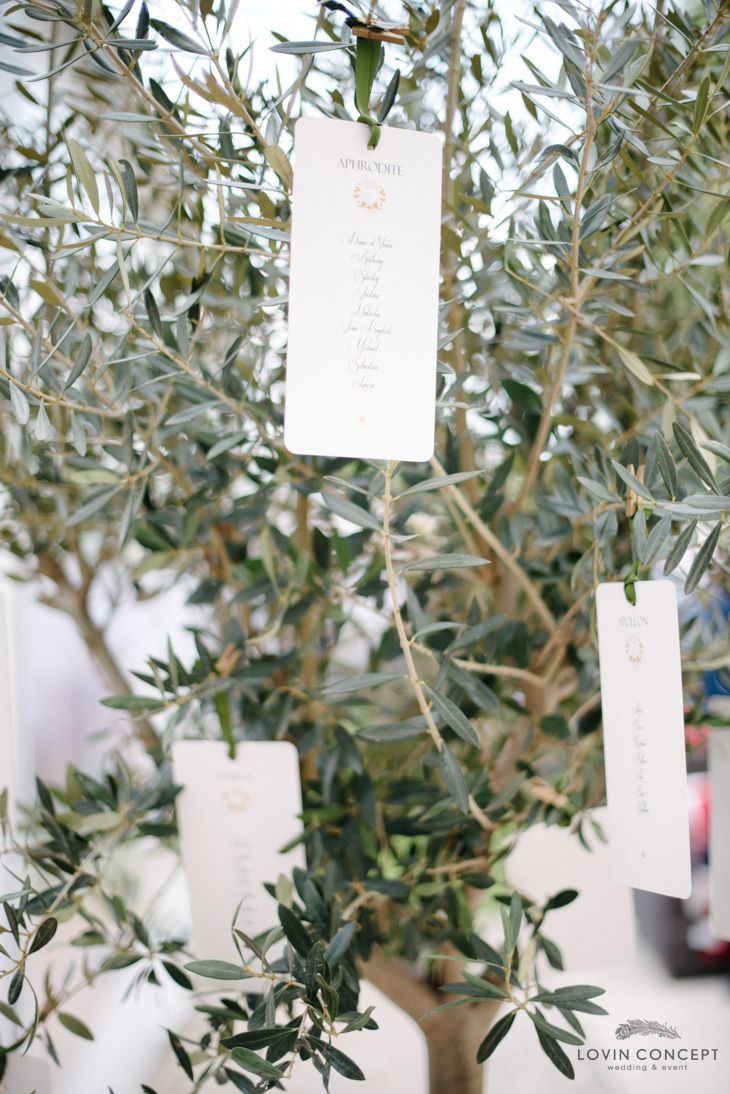 Le Meilleur Plan De Table Olivier Capturelife92 Wedding Styling Ce Mois Ci