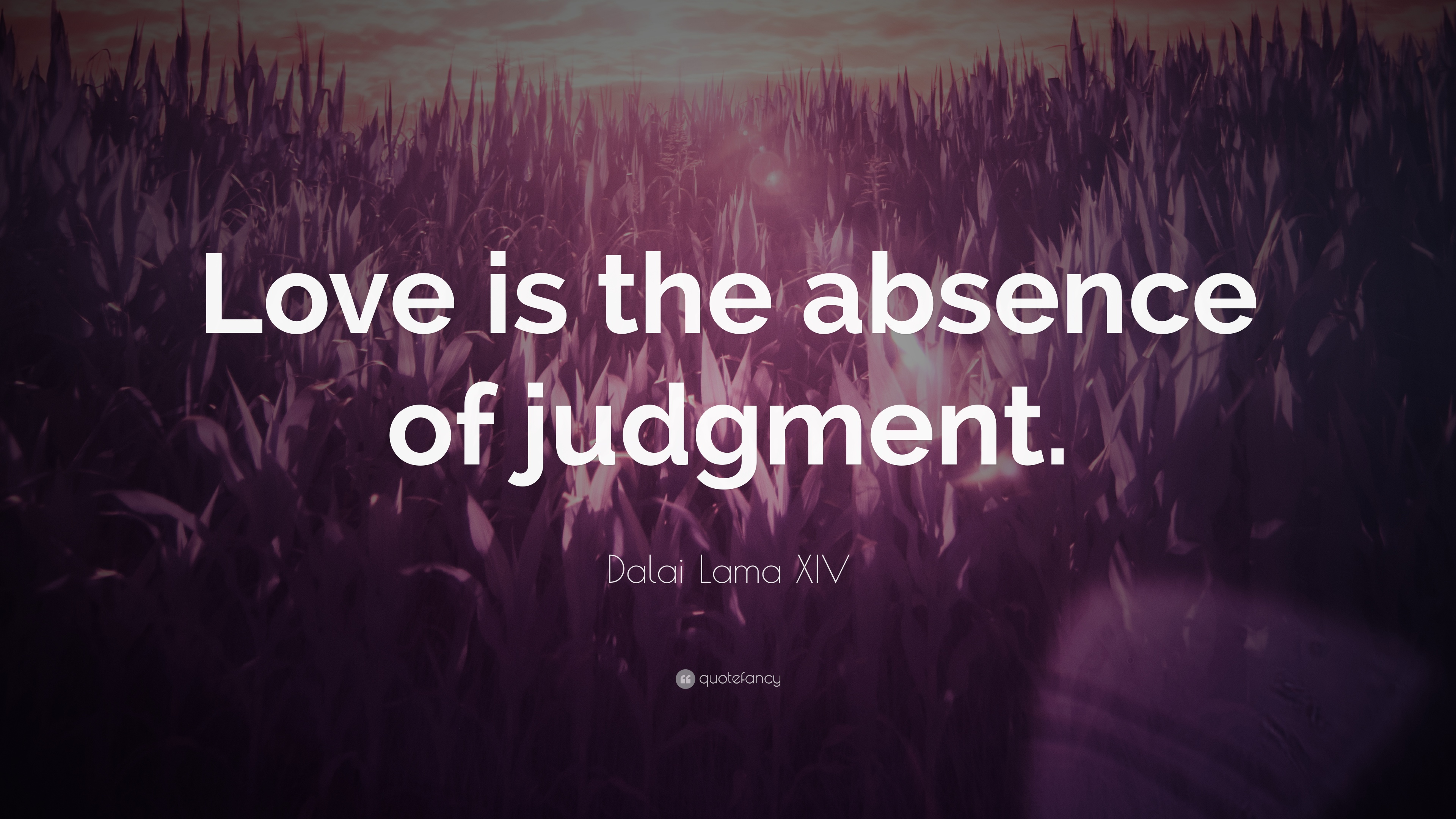 """Le Meilleur Dalai Lama Xiv Quote """"Love Is The Absence Of Judgment Ce Mois Ci"""