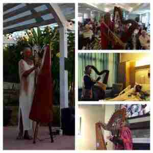 Geri Afshari and harp therapy
