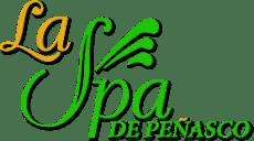 laspa-logo-template-u894