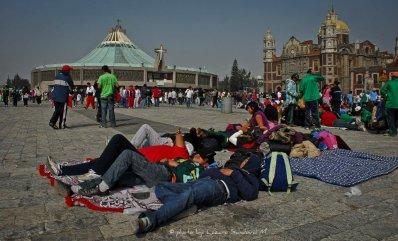 377532_180993121997215_152645858165275_322541_1455593136_n Día de la Virgen de Guadalupe