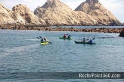 bird-island-31 ¡Hello, summer! Rocky Point Father's Day Weekend Rundown!
