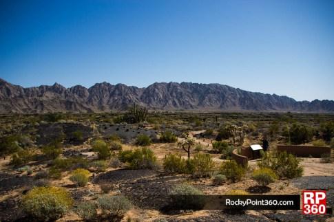 Vista desde el centro de viitantes suck toak en la reserva de la biosfera del pincacate y gran desierto de altar, puerto penacso sonora
